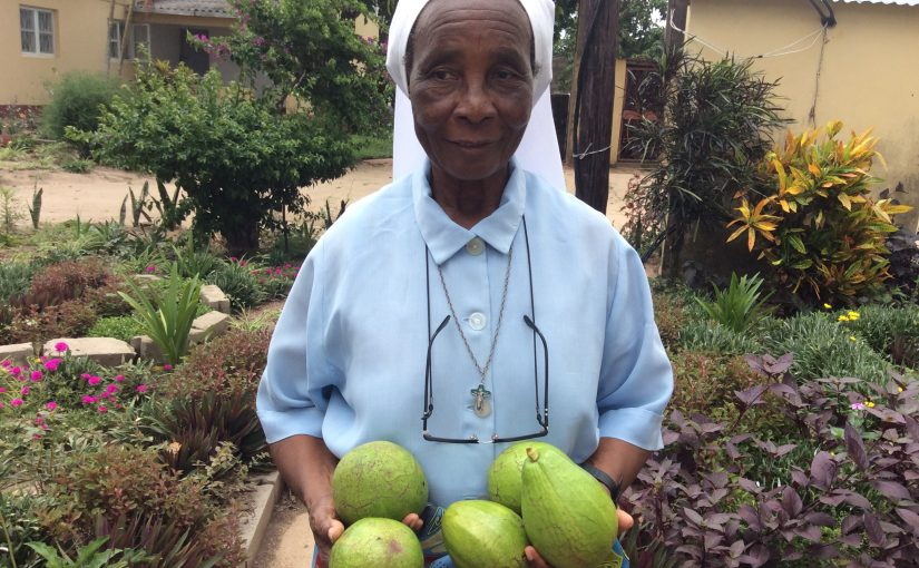 Morreu a Irmã Alda em Chicumbane
