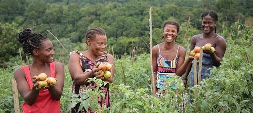 Dia de São Tomé e Príncipe (12 de julho)