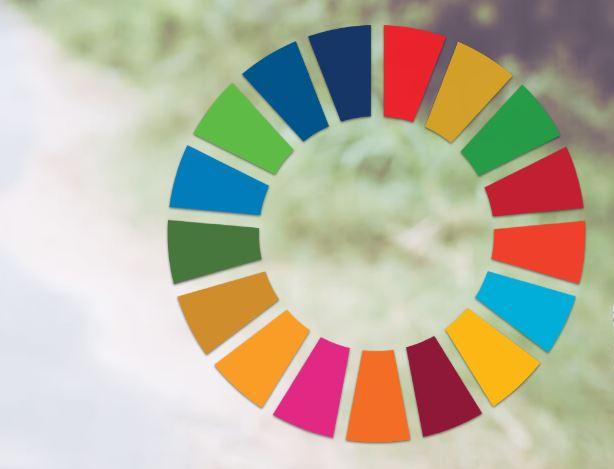 6º Aniversário da Agenda 2030 (25 de setembro)